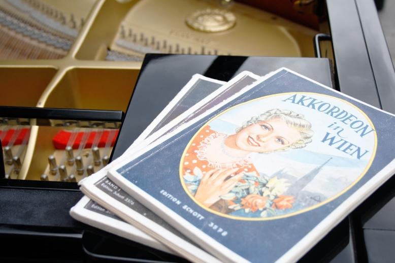 klavier-orgel-gesang-katharina-schaefer-piano-stuttgart-ludwigsburg-gerlingen-klavierunterricht-pianistin-hochzeitsmusik-wiener-akkordeon